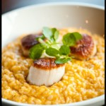 Butternut Squash Risotto and Pan Seared Scallops